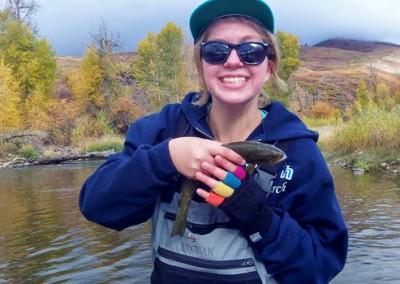 Fly Fishing Weber River